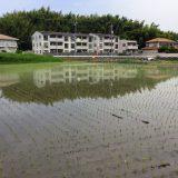 2018年の田植えが始まりました。パート1